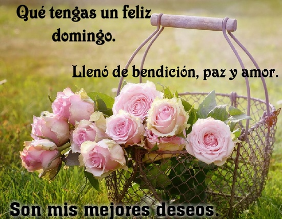 feliz domingo bendiciones
