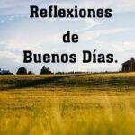 frases diarias de reflexiones